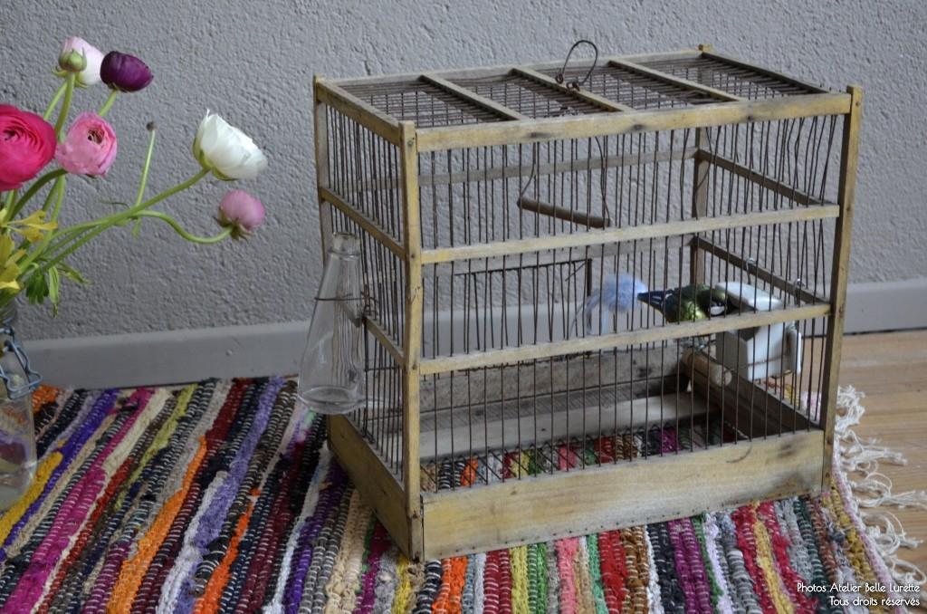 Cage à oiseaux Tallulah