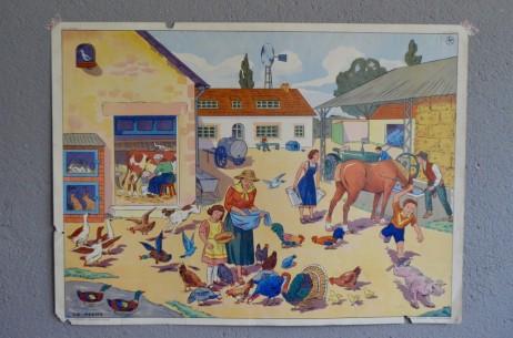 Affiche scolaire Thèmes :  La ferme Le chantier vintage poster pédagogique salle de classe décoration
