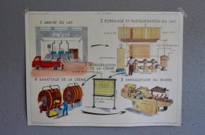 """Affiche scolaire Thèmes :""""La ferme d'élevage - La Laiterie"""" vintage poster pédagogique salle de classe décoration école paysan vache"""
