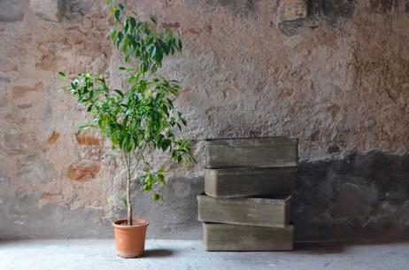 Voici de quoi fleurir le balcon avec de jolies plantes et en gardant un esprit design et vintage. Cette belle série de 4 jardinières en Eternit ou fibrociment nous viennent des années cinquante. D'une forme sobre, élégante elles seront l'écrins parfait pour les plantations extérieures!