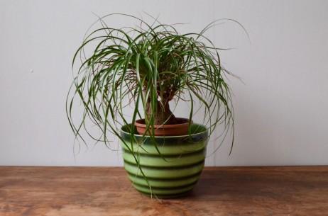 Cache pot Sarreguemines 5859 grand vintage porcelaine verte rayée bicolore ancien