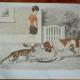 Poster d'école  vintage double face ancienne MDI : Chien et chat le sport
