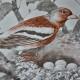 Affiche double face décoration murale : Le nid d'oiseaux - les enfants au zoo