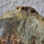 Vase brutaliste Diomène