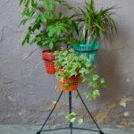 Porte-plantes Iggy