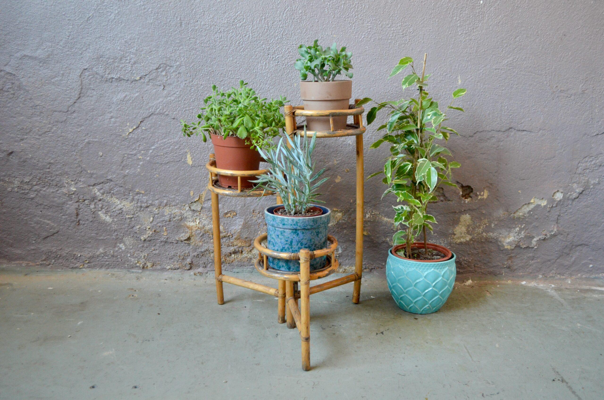 Jardinière porte-plantes en rotin années 60 pliant présentoir bohème original